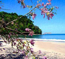 Playa Espadilla Sur, Manuel Antionio Nat. Park Costa Rica by Kurt  Van Wagner