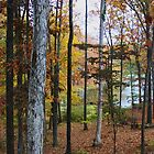 Lake Dressed in Autumn by Ginger  Barritt