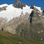 Vallee des Glaciers by Skye Hohmann