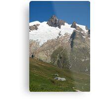 Vallee des Glaciers Metal Print