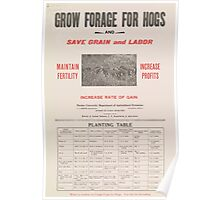 United States Department of Agriculture Poster 0058 Grow Forage for Hogs Save Grain and Labor Poster