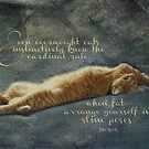 Cat Quote by vigor