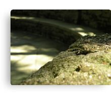 Gravel Wall Canvas Print