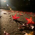 Autumn Drama II by Stacey Debono