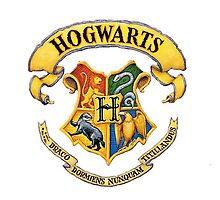 HARRY POTTER - HOGWARTS CREST by swhitewat