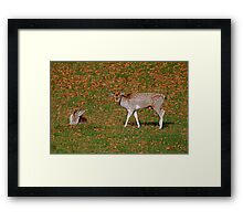 I Don't Know Who it is Either!! Framed Print