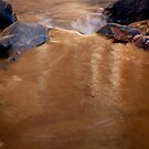 Golden Stream - Rock Creek Park, Washington, DC by Aaron Minnick