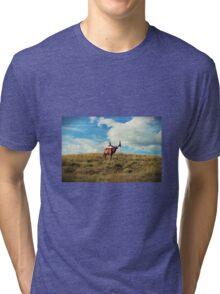 Bull and Black Birds Tri-blend T-Shirt