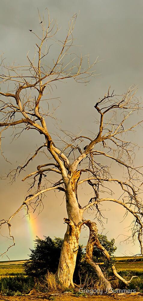 Beauty Never Dies by nikongreg