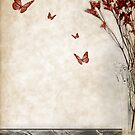 Red Butterfly by Barbara Simmons