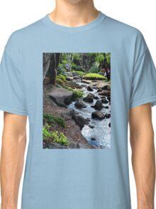 Japanese Gardens Toowoomba Queensland Australia Classic T-Shirt