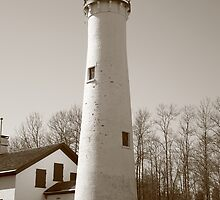 Lighthouse - Sturgeon Point, Michigan in Sepia by Frank Romeo