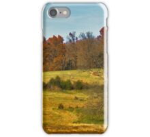 Farm in Renaissance Palette iPhone Case/Skin