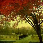 Lake Park ©  by Dawn M. Becker