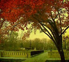 Lake Park ©  by Dawn M. Becker