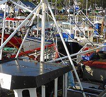 Boats Galore by Fara