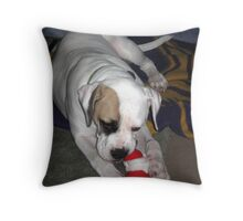 Don't Touch My Toy Throw Pillow