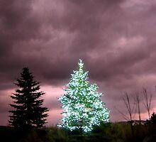 Lit Tree by JoAnn Glennie