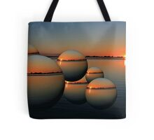 2010 Flood Tote Bag