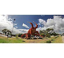 Big Lobster Photographic Print