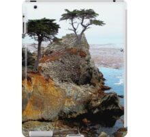 The Lone Cypress At Pebble Beach iPad Case/Skin