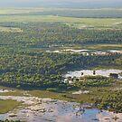 Arnhem Land Ariel View by Pauline Tims