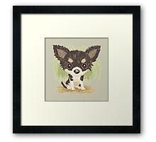 Chihuahua is sitting Framed Print