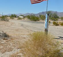 trailer patriot, mojave desert by viviangirl