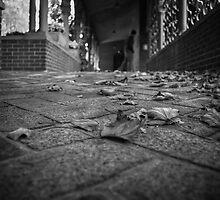Autumn Forever by Eric Scott Birdwhistell
