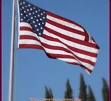 The American Flag by Glenn McCarthy