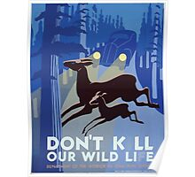 WPA United States Government Work Project Administration Poster 0274 Don't Kill Our Wild Life Poster