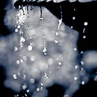 ...every day I feel the essence of you dripping away... by Geoffrey Dunn