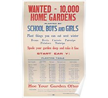 United States Department of Agriculture Poster 0240 Wanted 10000 Home Gardens Planted by School Boys and Girls Poster