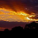Sunset over the Murray River. Australia by Ali Brown