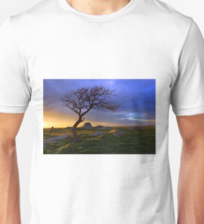 Dog Rocks Unisex T-Shirt
