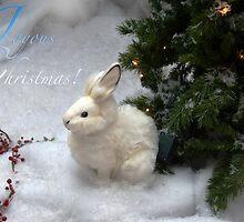 Joyous Christmas by Susan van Zyl