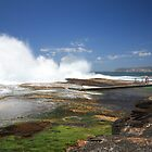 North Curl Curl rock pool by fionapine