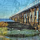 The Pier - Point Lonsdale by peterperfect