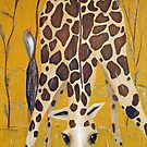 Birds on Baby Giraffe by Tom Norton