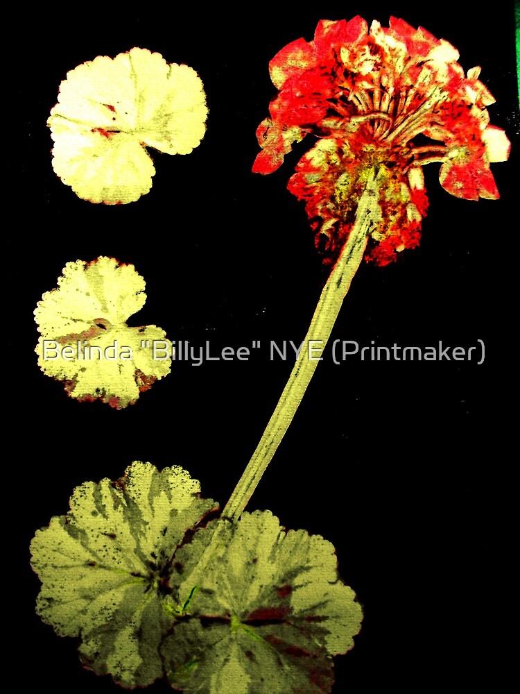 "November's Garden 8 - Monoprint by Belinda ""BillyLee"" NYE (Printmaker)"