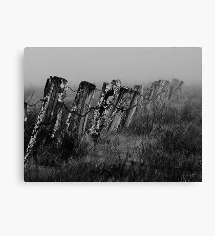 Monochrome Fence Canvas Print