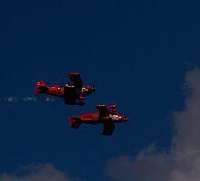 Red Eagle I: Mirror, Mirror by mojo1160