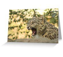 Growling Snow Leopard - Marwell Zoo Greeting Card