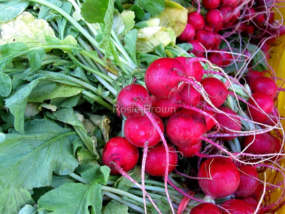 Radishes by Rosie Brown