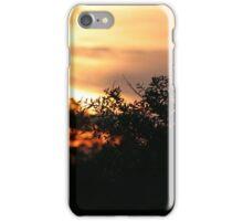 Sunset in Florida Swamp iPhone Case/Skin