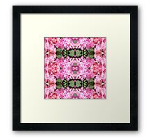 Hydrangea - In the Mirror Framed Print