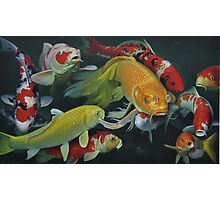 Oil painting:FISH Photographic Print