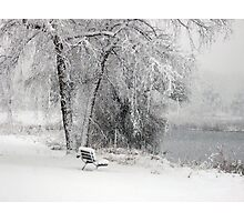 Wintery Watch Photographic Print