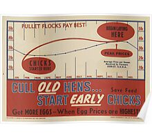 United States Department of Agriculture Poster 0314 Cull Old Hens Start Early Chicks Poster