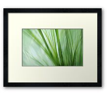 dancing grasses Framed Print